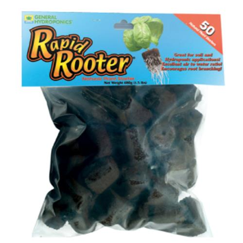 GH Rapid Rooter...