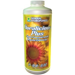 GH Floralicious Plus Quart