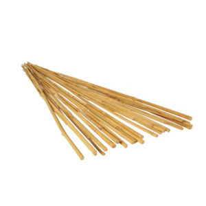 GROW!T 8' Bamboo Stakes, Natural