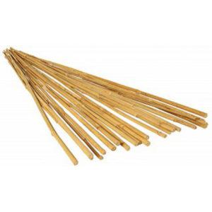 Natural Finish Bamboo