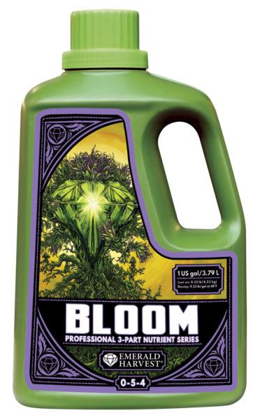 bloom 1 gal e1620328578419